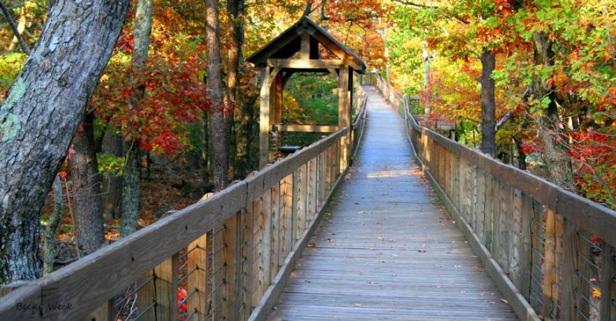 Cheaha Resort State Park4