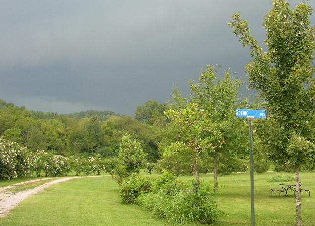 Mill Creek RV Park6