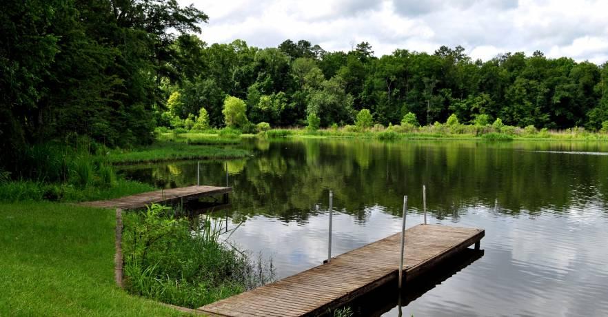 Roland Cooper State Park2
